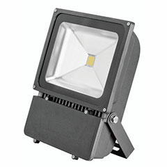 LED FLD FXT 5700K 100W COOL