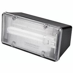 FLDLGHT PL-13 W W/LAMP BLK