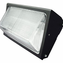 HPS WP 150 W W/LAMP